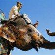 Стоит ли переезжать жить в Индию
